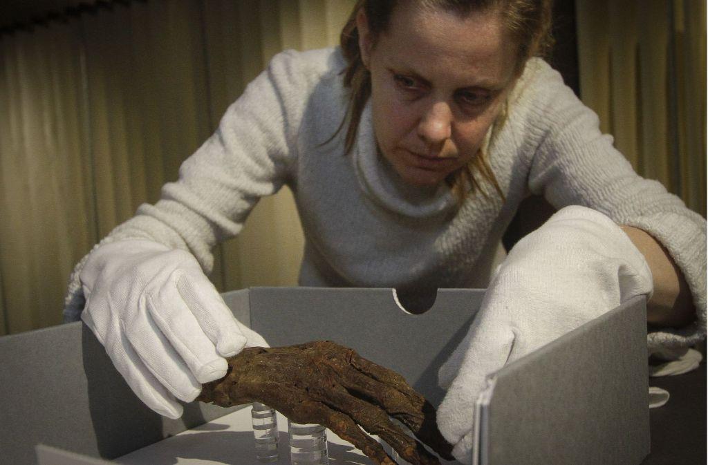 Die Mumienhand stammt aus Ägypten  – ein Stadtrat hat sie im 19. Jahrhundert nach Ludwigsburg gebracht. Foto: factum/Bach
