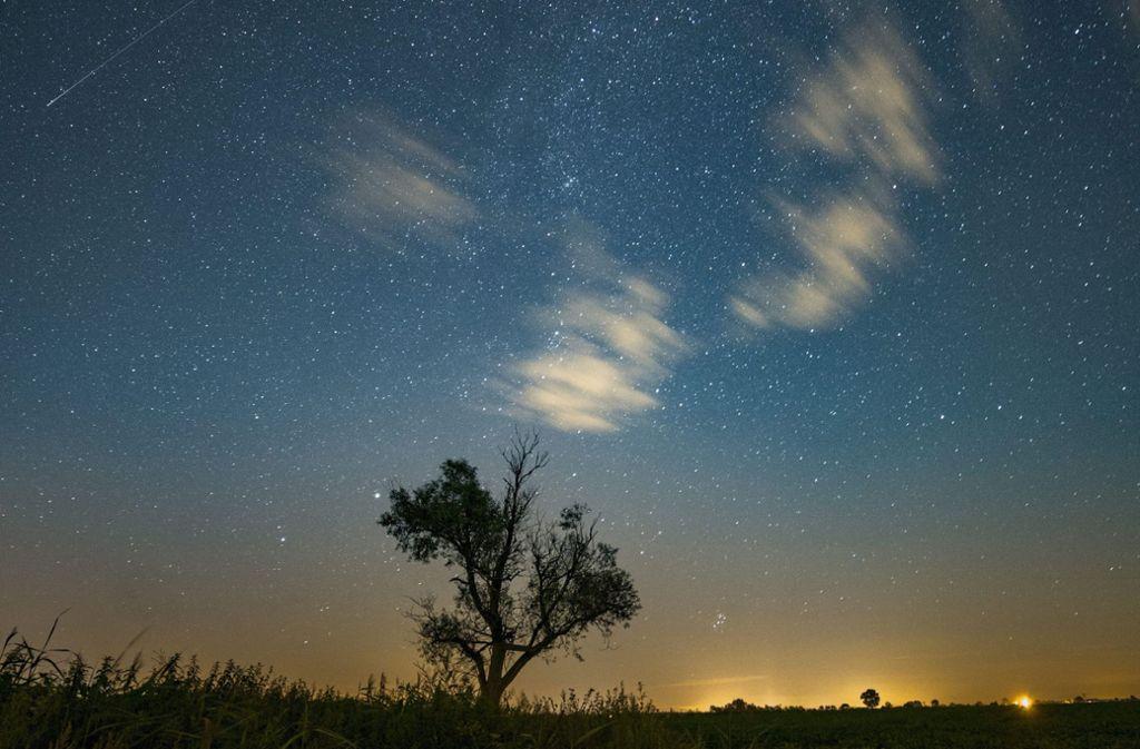 Die Leoniden produzieren im November einen wahren Sternschnuppen-Regen. Foto: PAP