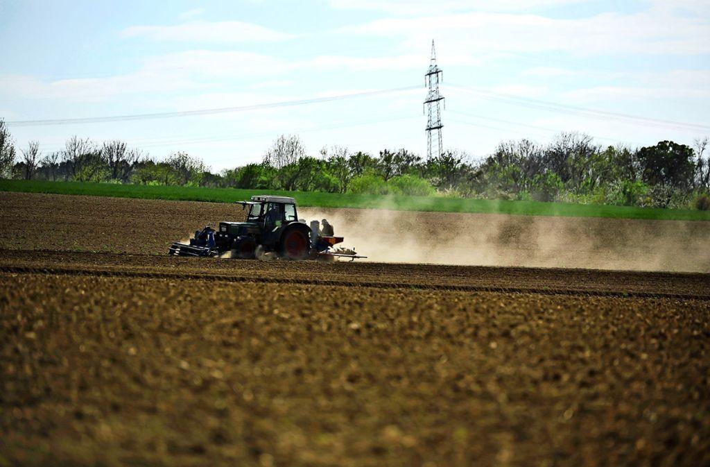 Anhaltende Trockenheit bedeutet für Landwirte  eine Einbuße bei der Ernte. Foto: Lichtgut/Max Kovalenko