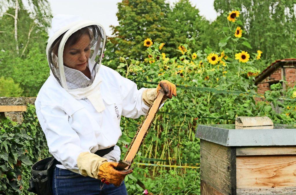 Victoria Gommel kümmert  sich in  ihrer Freizeit um mehrere Bienenvölker. Foto: factum/Granville