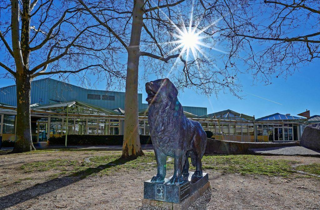 Im Moment wacht der Leonberger Hund vor der Stadthalle. Am 24. Januar bekommt er Verstärkung. Foto: factum/Bach