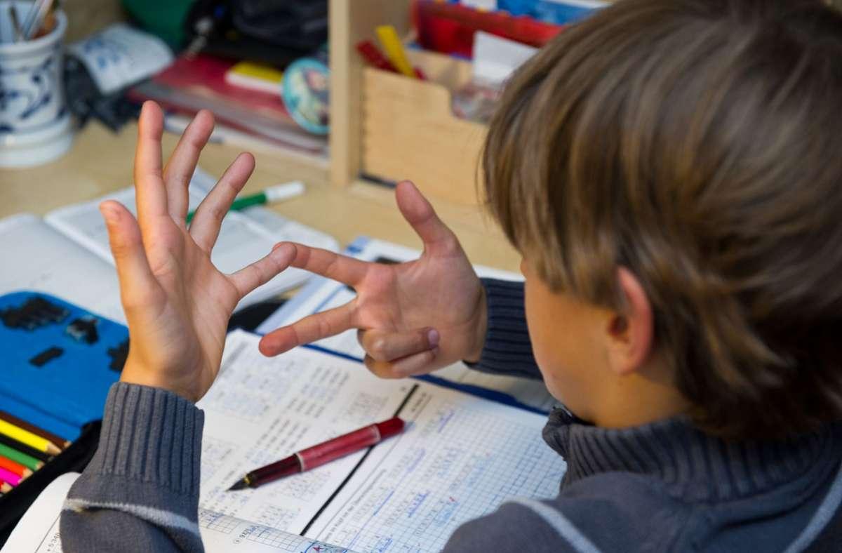 Unterstützung gibt es unter anderem in der Schulbegleitung (Symbolbild). Foto: dpa/Patrick Pleul