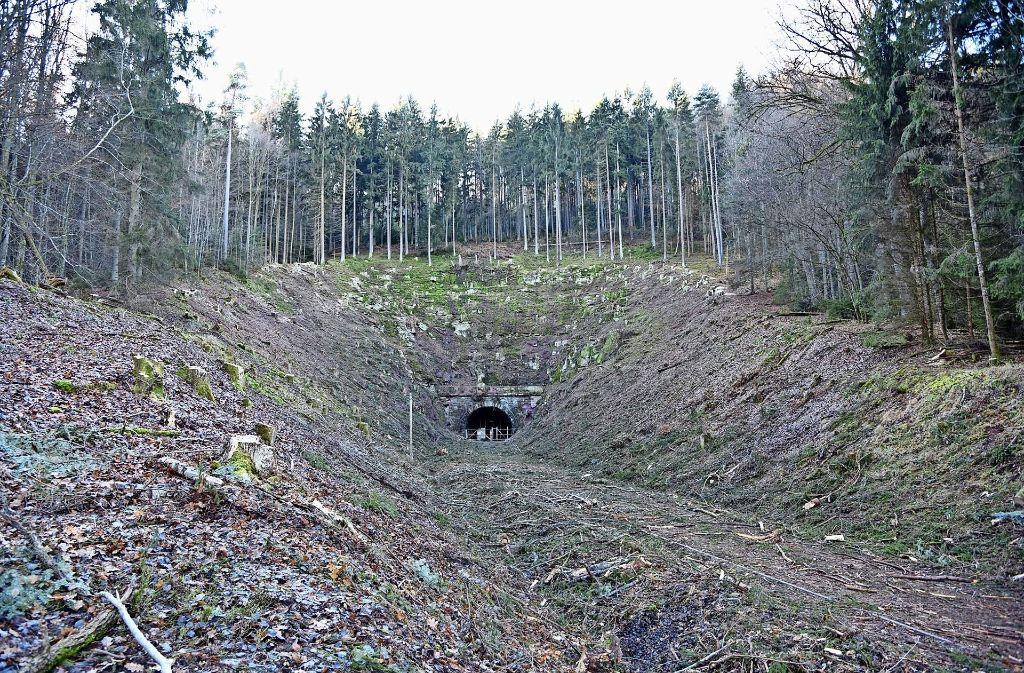 Vorher-Nachher-Aufnahmen, mit denen der Nabu die Rodungsarbeiten am  Hirsauer Tunnel dokumentiert hat. Teilweise darf Calw die Baumfällungen jetzt fortsetzen. Foto: Nabu