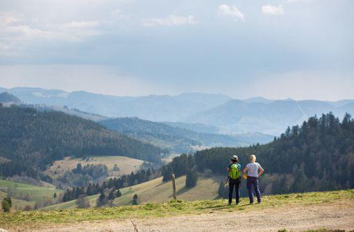 """Schwarzwald-Besucher sollen """"Umwelteuro"""" bezahlen"""