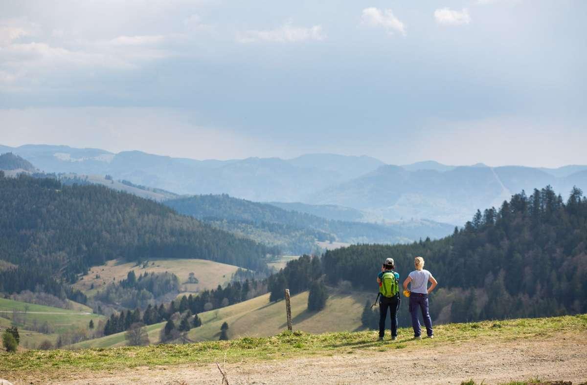 Gratis-Freizeitspaß ade? Touristiker peilen eine Abgabe für Schwarzwald-Besucher an. Foto: dpa/Philipp von Ditfurth