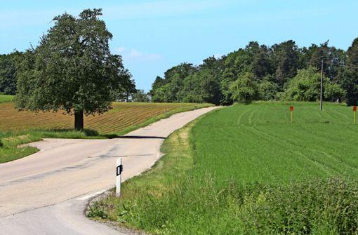 Holperstrecke nach  Mönsheim wird ausgebaut