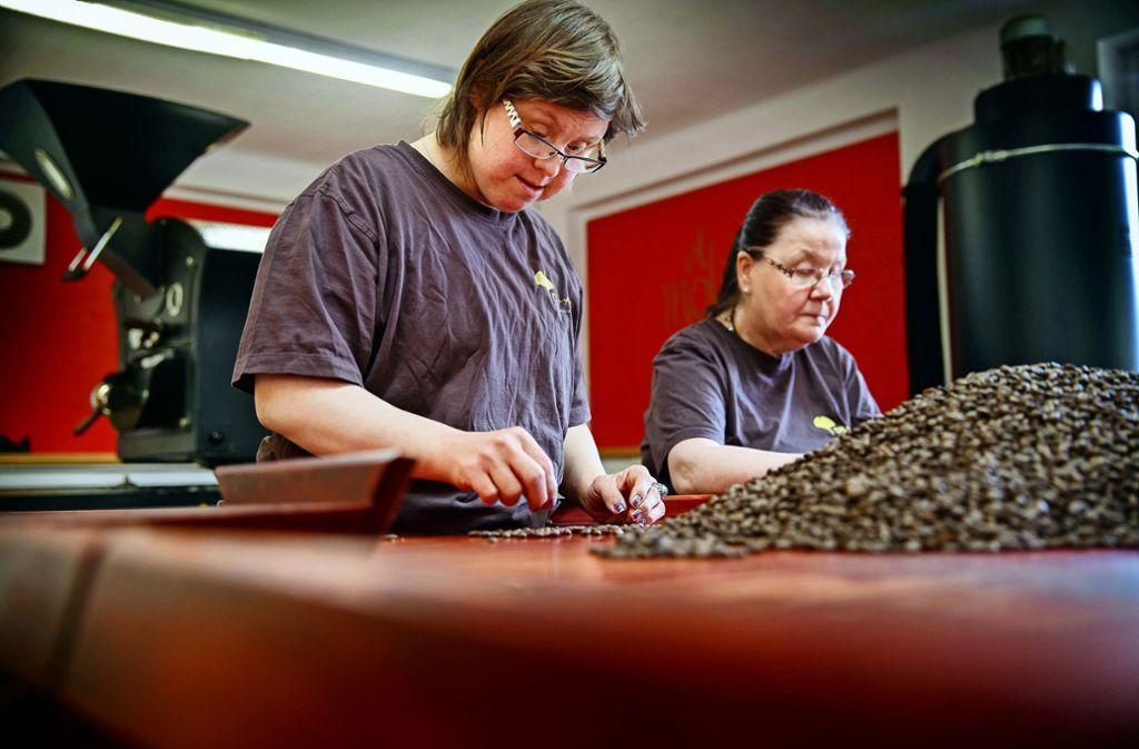 Daniela Lihs (links) und Angelika Grey  sortieren akribisch die schlechten Kaffeebohnen aus. Foto: Gottfried Stoppel