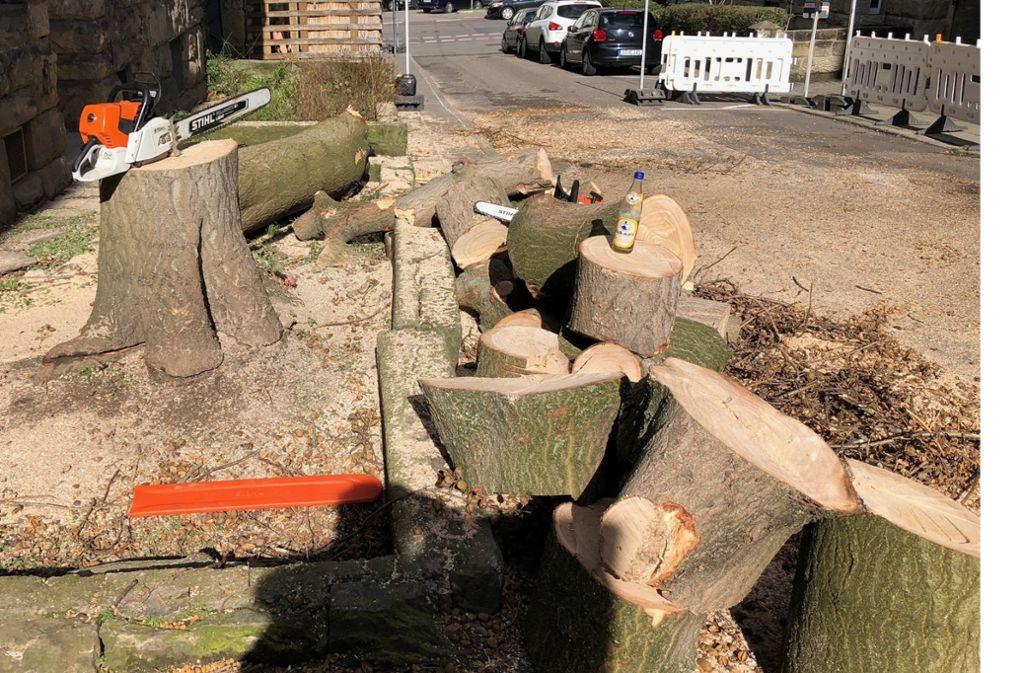Die Reste eines stattlichen Baumes an der Pelargusstraße Foto: Haar