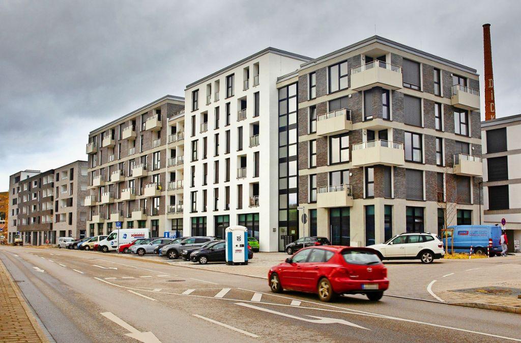 Auf dem ehemaligen Esslinger Güterhahnhofareal entsteht seit 2016 ein modernes Stadtquartier, die Neue Weststadt. Allmählich nimmt sie Gestalt an. Foto: Ines Rudel