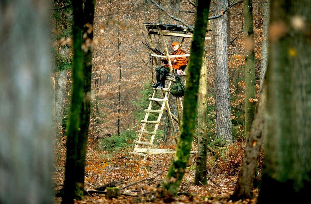 """""""So ist Jagd"""": Manchmal warten die Jäger vergeblich mehrere Stunden auf das Wild. Foto: factum/Granville"""
