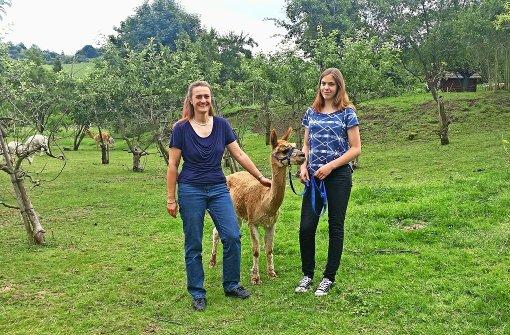 Gabriele Schäfer züchtet Alpakas am Fuße des Württembergs
