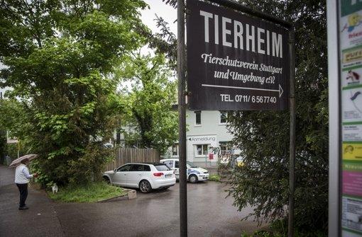 Das Stuttgarter Tierheim hat finanzielle Probleme. Foto: Achim Zweygarth