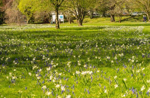 Mundschutzpflicht für Parkbesucher