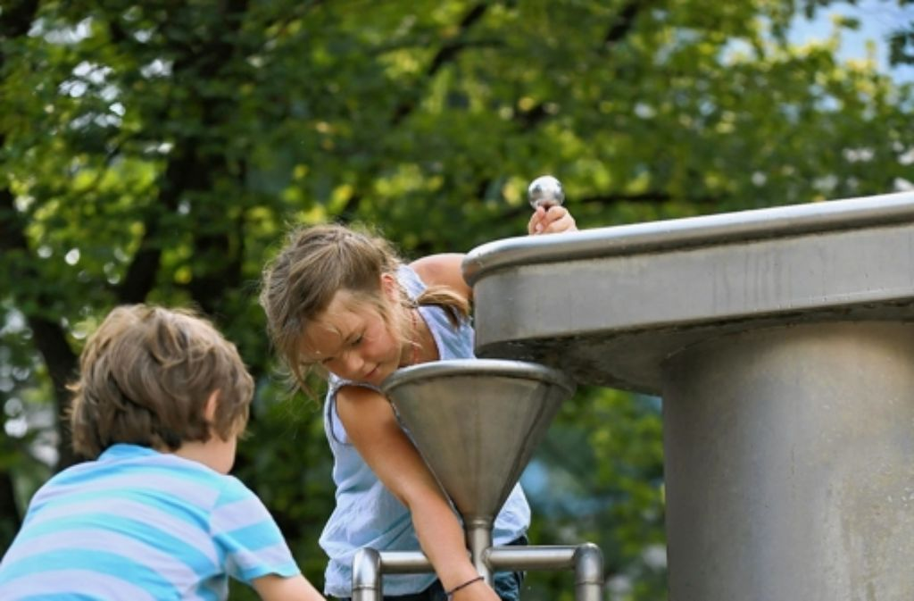 Die Achtjährigen achten auf ganz andere Dinge als Erwachsene. Foto: Achim Zweygarth