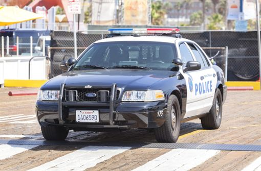 Polizei stoppt Auto nach Verfolgungsjagd – Hund am Steuer