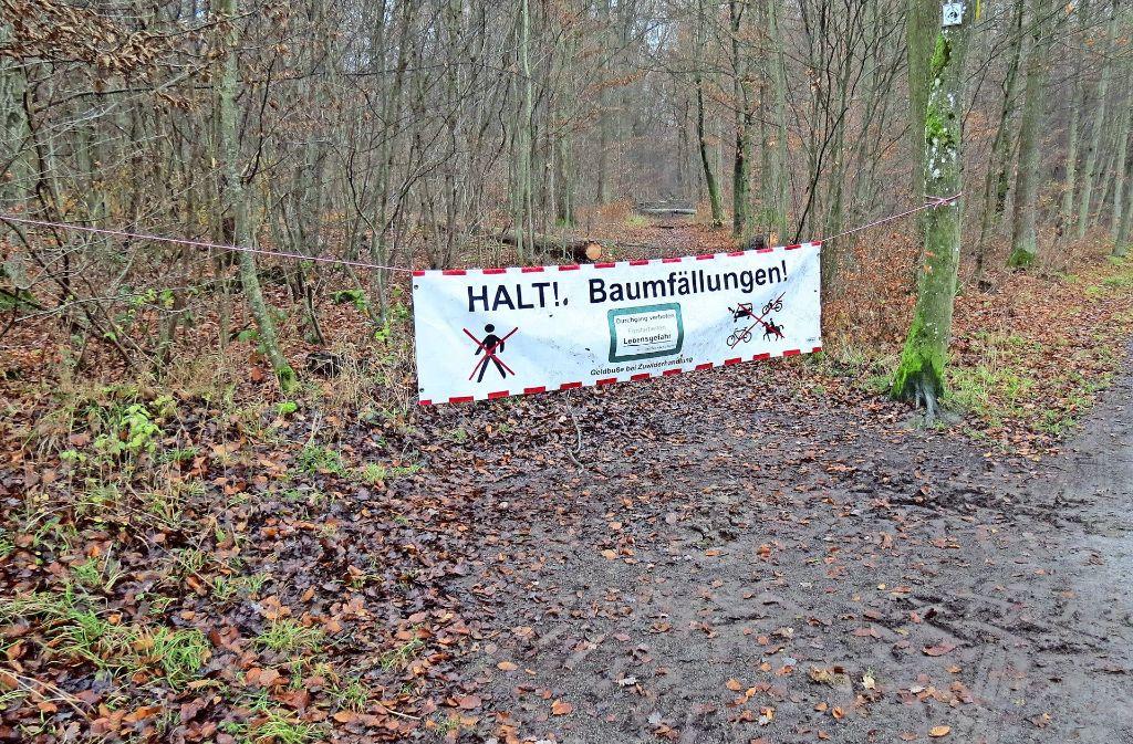 Wegen  Baumfällarbeiten sind aktuell einige Wege gesperrt. Foto: Julia Bosch