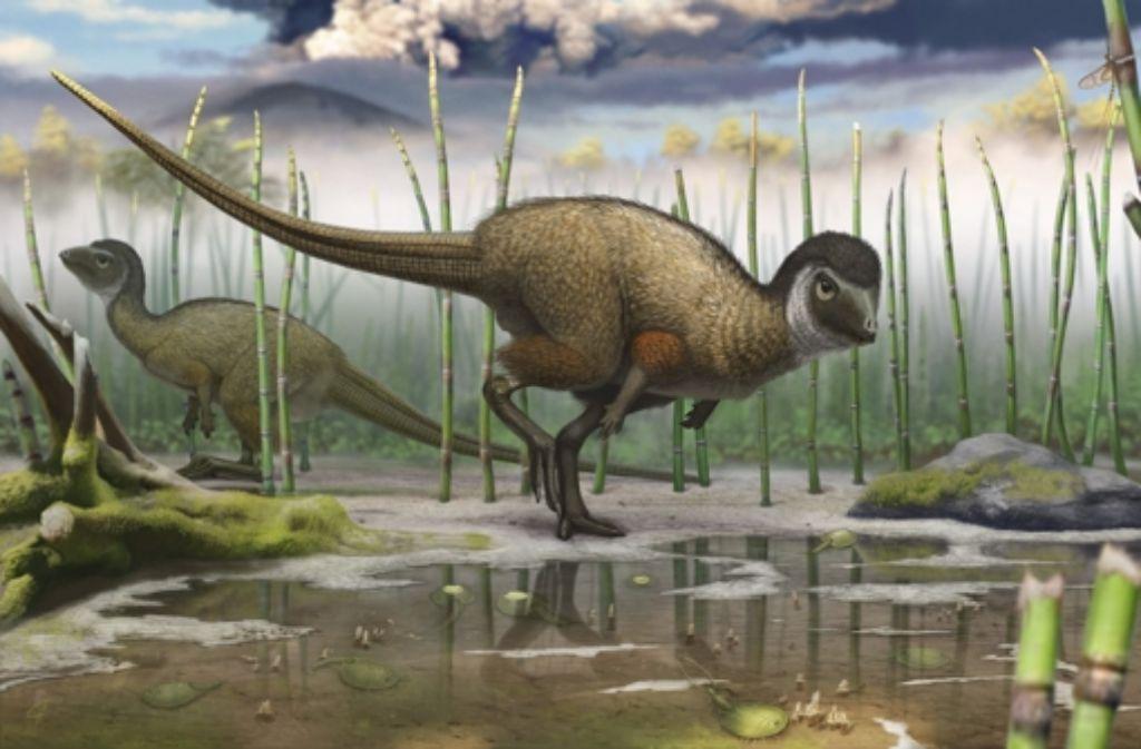 Der anderthalb Meter lange Kulindadromeus zabaikalicus hatte ein Federkleid, das ihn wärmt. Dinosaurier wie dieser zeigen, wie sich Schritt für Schritt die Federn etablierten. Foto: Andrej Atachin