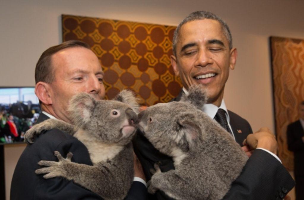 Kuscheliger G20-Gipfel: US-Präsident Barack Obama (rechts) und Australiens Premier Tony Abbott mit zwei Koalabären. Foto: Getty Images AsiaPac