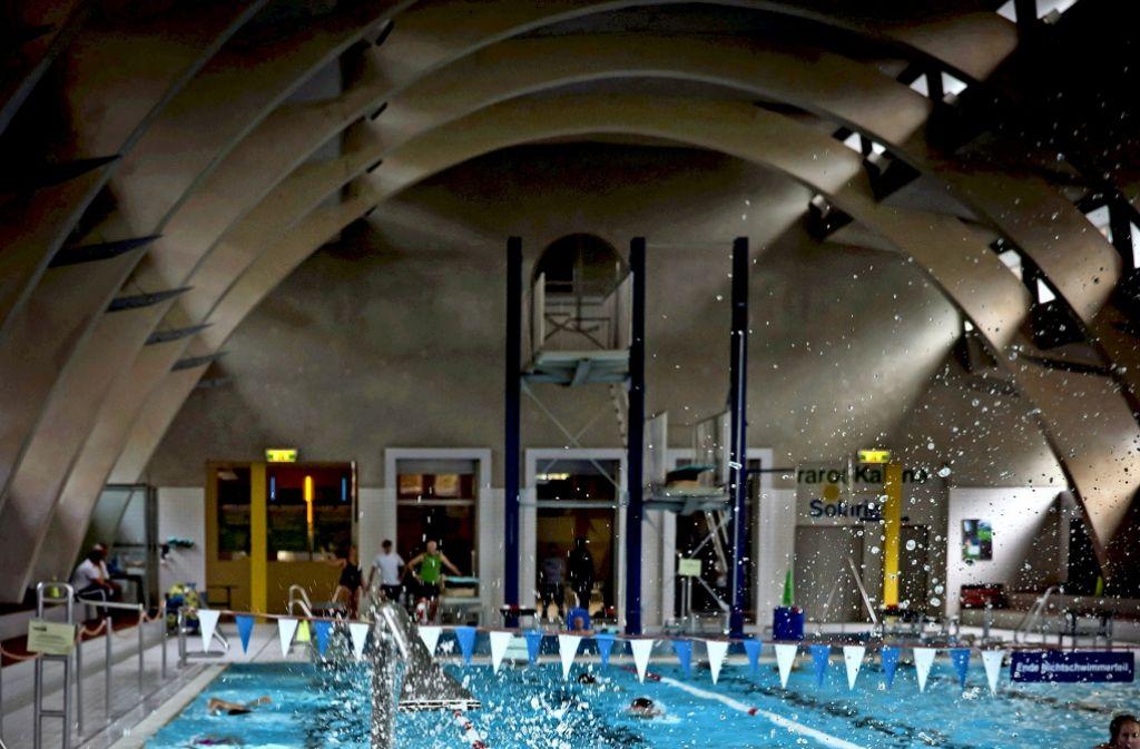 Schwimmen macht Spaß, will aber gelernt sein. Foto: Lichtgut/Achim Zweygarth