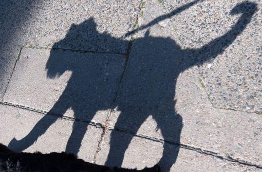 Mann fühlt sich von Hund gestört – 48-Jähriger ruft zur Tötung auf