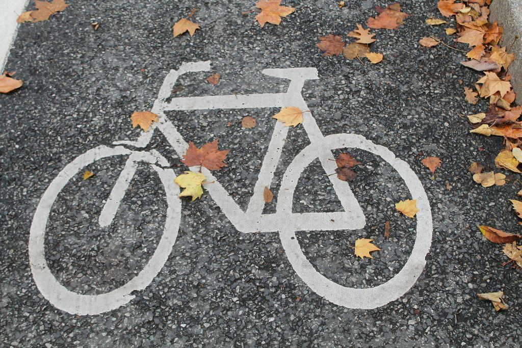 Ob mit dem Mountainbike über wurzelige Pfade oder mit dem E-Bike gemütlich am Neckar entlang - bei den Radtouren rund um Stuttgart ist für jeden Geschmack etwas dabei. Foto: Pixabay