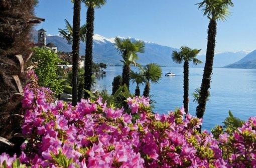 Traumhaft schön ist es am Lago Maggiore. Gemordet wird dort trotzdem, zumindest in Bruno Vareses Krimi. Foto: Switzerland Tourism