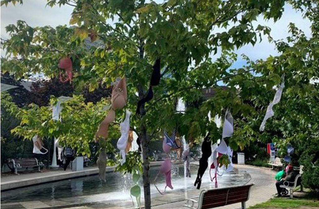 Bunt geschmückt: ein Baum vor dem Rathaus von Ottawa Foto: Twitter