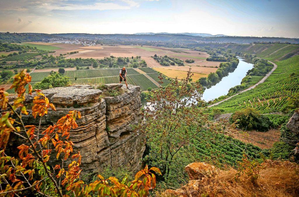 Die Felsengärten in Hessigheim eignen sich prima zum Klettern. Auch beim Wandern ist die Aussicht grandios – auf den Neckar und die Weinberge. Foto: factum/Granville