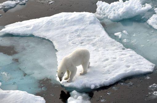 Klimapolitik  von unten nach oben