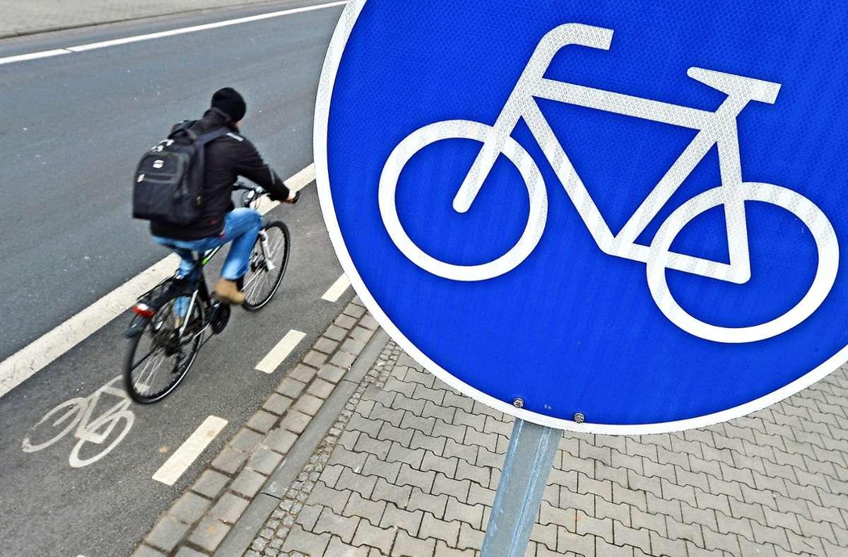 Mit einem E-Bike wäre der Schulweg für Felix Weinmann nicht so beschwerlich. Foto: dpa/Arne Dedert
