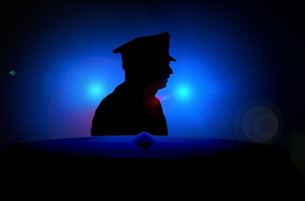 Der Polizist wurde leicht im Gesicht verletzt. Foto: pixabay