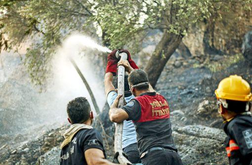 Wie die Türkei das Ausmaß der Katastrophe zu vertuschen versucht