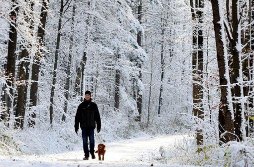 Diese Wanderungen sind auch im Winter reizvoll