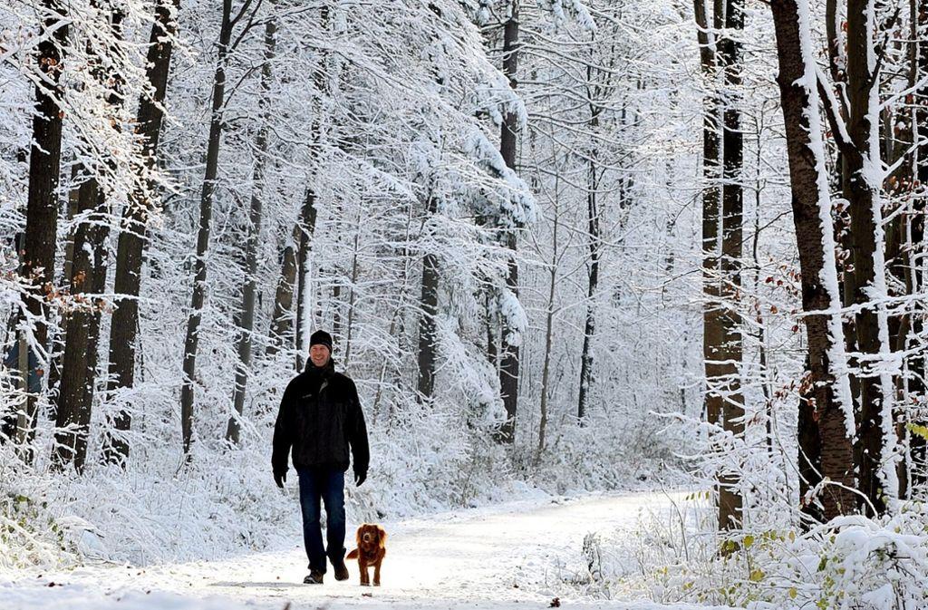 Frische Luft und Bewegung kommen im Winter oft zu kurz. Im Kreis Böblingen gibt es zahlreiche Wanderungen, die auch bei Kälte Spaß machen. Foto: dpa