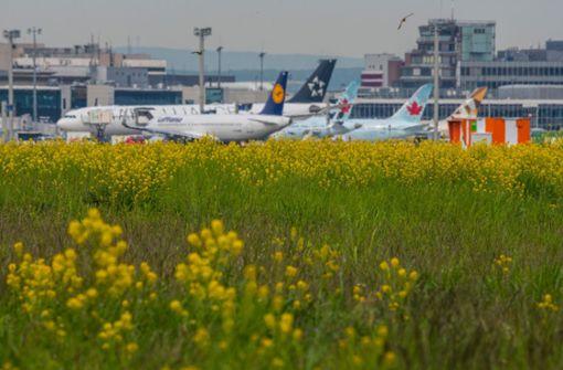 Computer-Panne behindert Betrieb am Frankfurter Flughafen