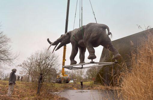 Warum Urzeitelefanten durch die Luft fliegen