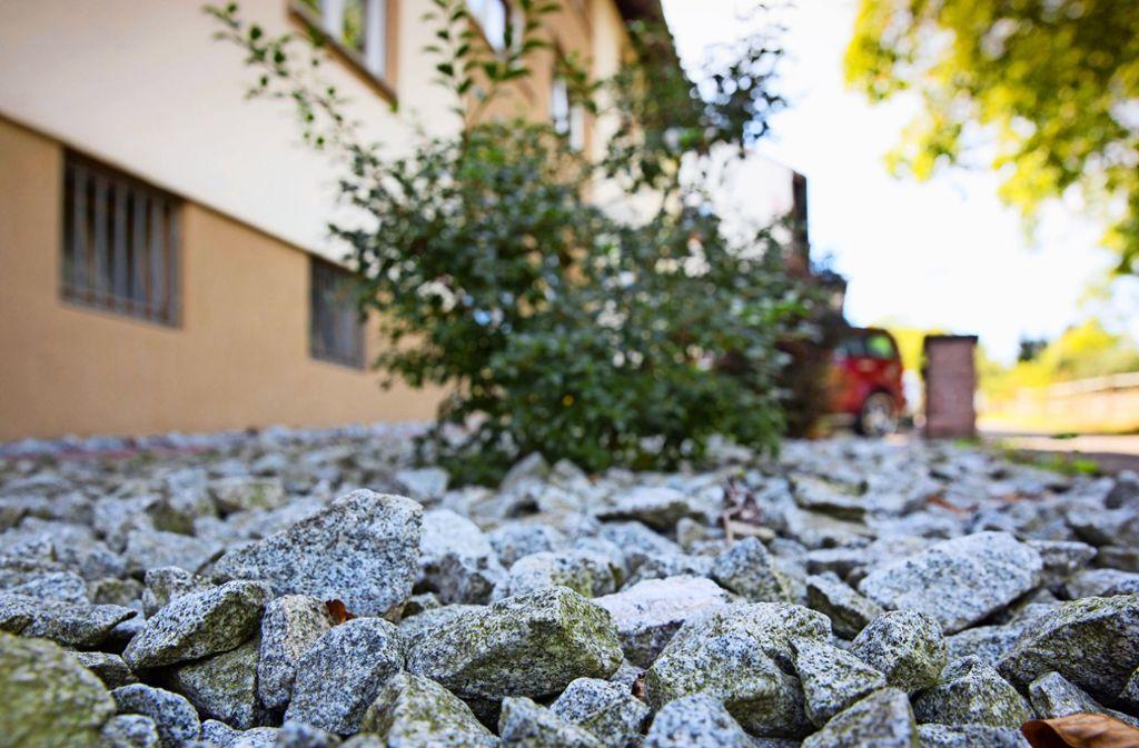 Steine im Garten statt Gras, Erde und Blumen – sollte man das verbieten? Foto: Frank Eppler