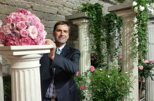 Rendezvous mit prächtigen  Rosen