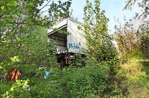 Landtag befasst sich mit wilder Mülldeponie
