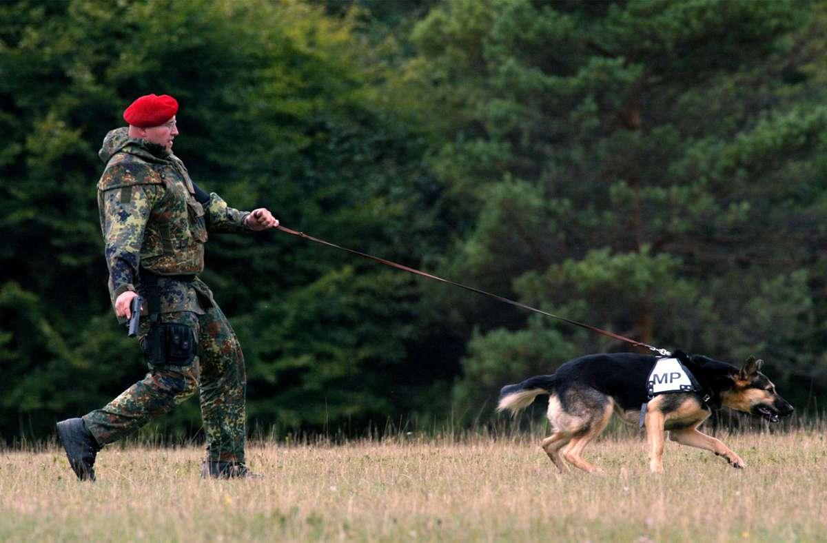 Ersten Ergebnissen zufolge können Hunde  wohl Corona-Infektionen riechen. Foto: dpa/Günter Schiffmann