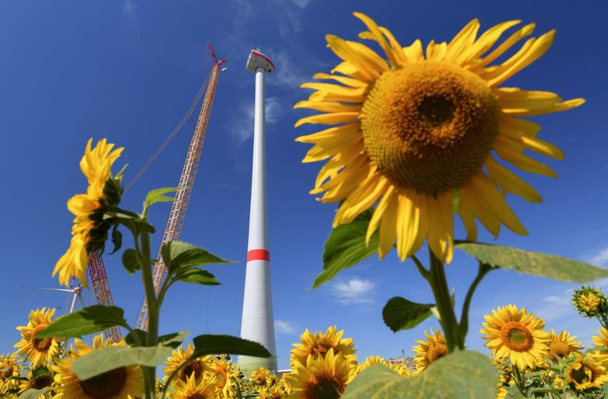 Kostspielige Projekte für den Klimaschutz könnten dem Sparzwang zum Opfer fallen. (Symbolfoto) Foto: dpa/Patrick Pleul