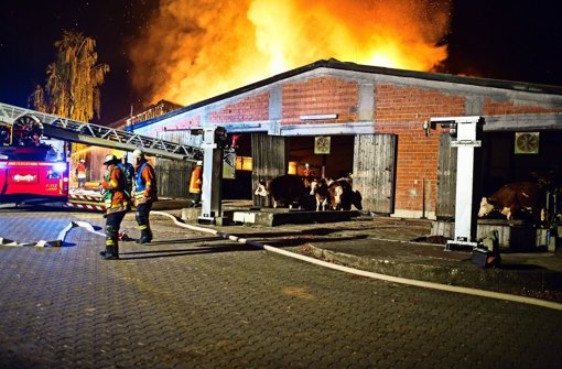 Stall und Maschinenhalle  zerstört