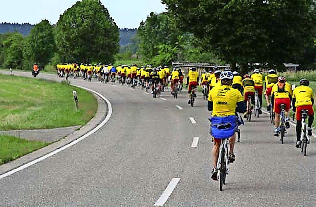 Jedes Jahr tragen die  Radler der Tour Gingko  auffällig gelbe Trikots. Foto: Gottfried Stoppel