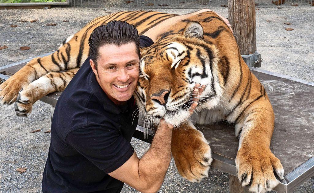 Cashmere lässt sich am ehesten knuddeln. An jedem Gastspielort posiert  Lacey mit dem Tiger. Foto: factum/Andreas Weise