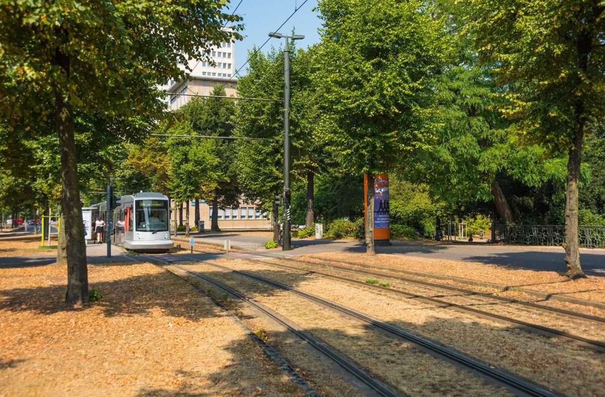 In den Innenstädten Deutschlands droht Hitze, dagegen könnten mehr Baumpflanzungen helfen. (Symbolbild) Foto: imago/viennaslide/www.viennaslide.com