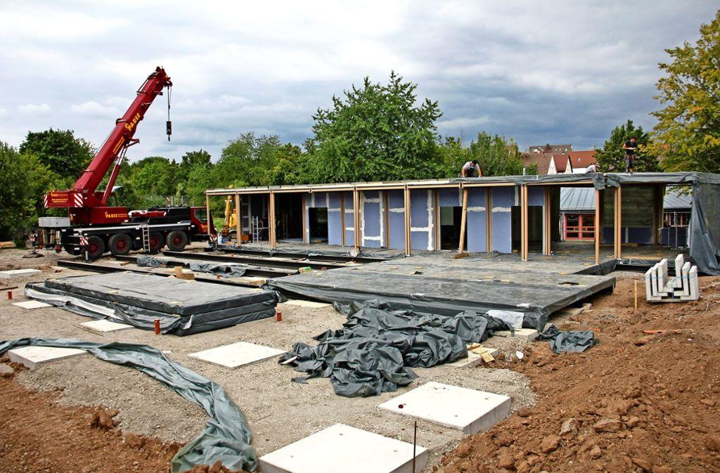 Für knapp drei Millionen Euro wird derzeit in Stammheim ein neues Schulgebäude erstellt – es ist nur als Übergangslösung genehmigt, bis weitere Neubauten fertig sind. Foto: Chris Lederer