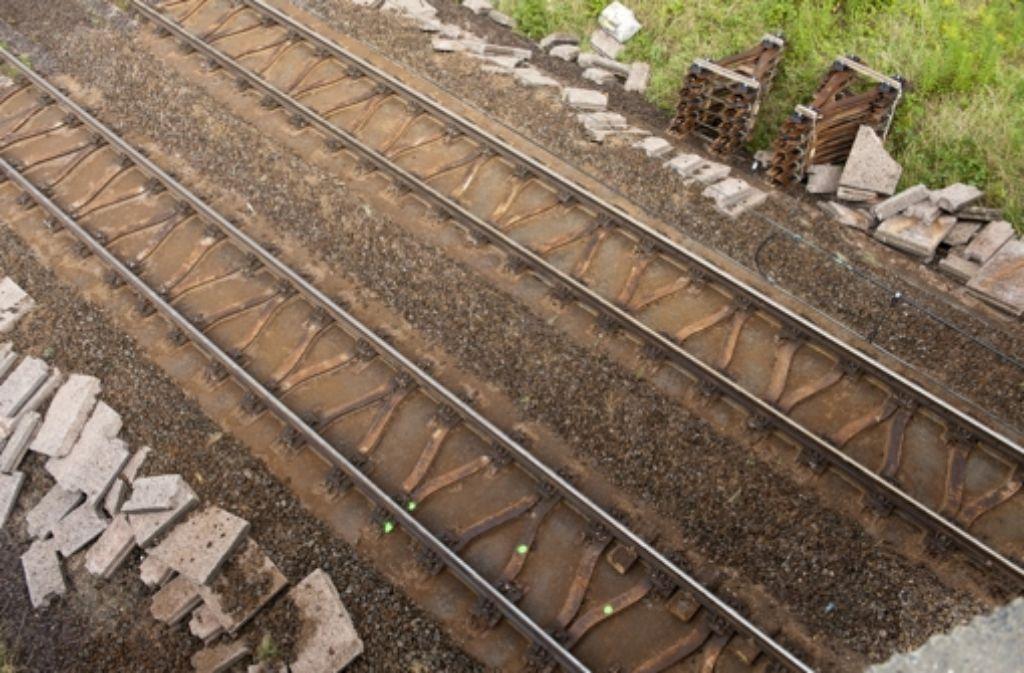 Die Kritik am deutschen Schienennetz wird laut. Foto: dapd