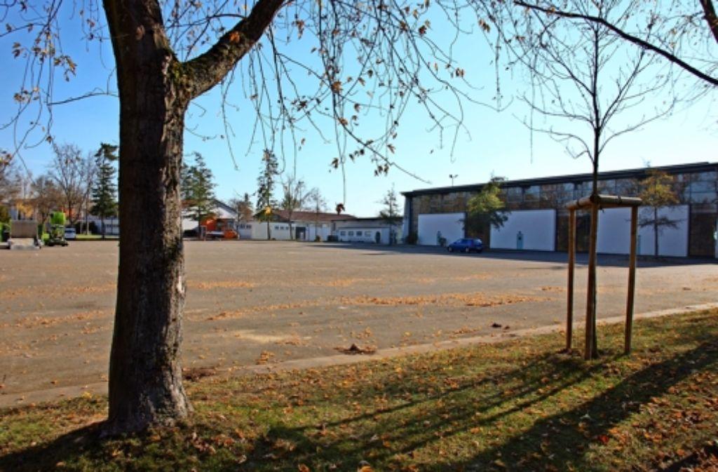 Als Standort für eine Notunterkunft ins Auge gefasst: der Parkplatz am Sportzentrum Weilerhau in Plattenhardt. Foto: Sascha Schmierer