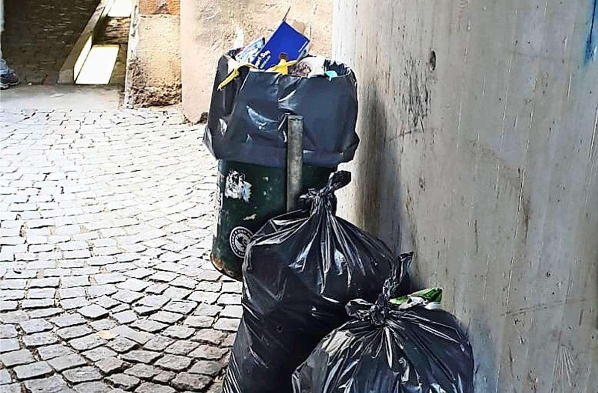 Immer wieder wird in Plochingen illegal Müll abgestellt. Die Entsorgungskosten trägt die Allgemeinheit. Foto: oh