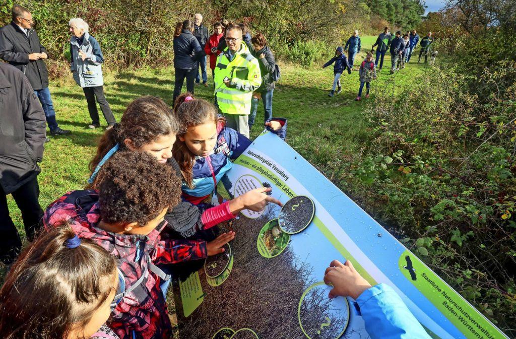 Viertklässler aus Aidlingen testen die Tafeln des Naturlehrpfads. Foto: factum/Simon Granville